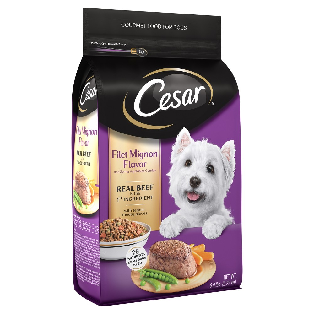 Cesar Filet Mignon Flavor with Spring Vegetables Dry Dog Food - 5lbs