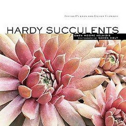 Hardy Succulents : Tough Plants for Every Climate (Paperback) (Gwen Moore Kelaidis) - image 1 of 1