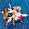 Swimline LOL 90268 Swimming Pool Kids Giant Rideable On Cow Inflatable Float Toy - image 4 of 4