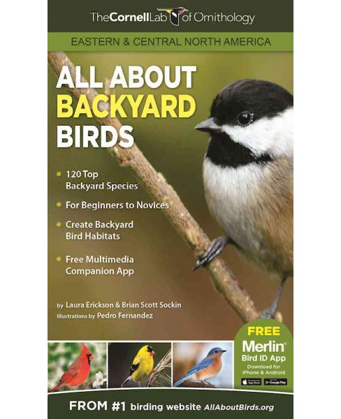 All About Backyard Birds : Eastern & Central North America (Paperback) - image 1 of 1