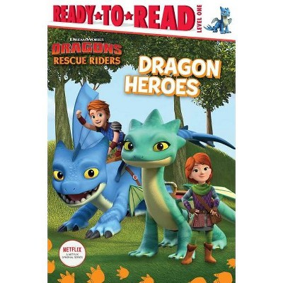 Dragon Heroes - (DreamWorks Dragons: Rescue Riders) (Paperback)