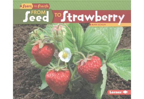 From Seed to Strawberry (Paperback) (Mari Schuh) - image 1 of 1