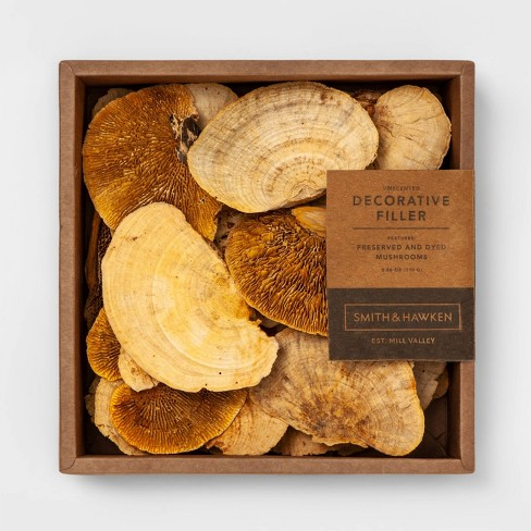 Unscented Dried Mushroom Vase Filler Yellow - Smith & Hawken™ - image 1 of 1
