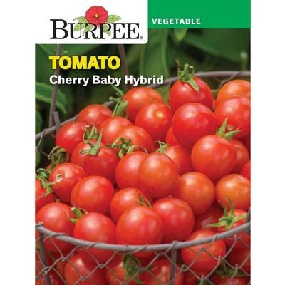 Burpee Tomato Cherry Cherry Baby Hybrid