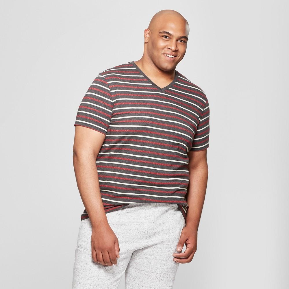 Men's Big & Tall Striped Standard Fit Short Sleeve V-Neck T-Shirt - Goodfellow & Co Charcoal 5XB, Gray