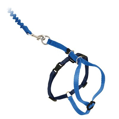 PetSafe Come with Me Kitty and Bungee Adjustable Leash Cat Harness - Blue