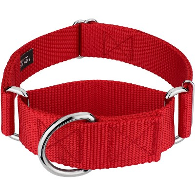 Country Brook Petz® 1 1/2 Inch Martingale Heavyduty Nylon Dog Collar