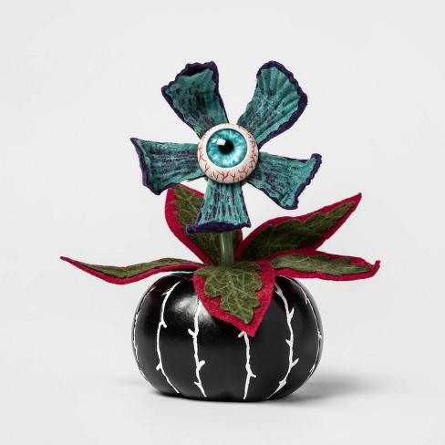 Creepy Succulent in Black Pumpkin Halloween Dcor - Hyde & EEK! Boutique - Hyde and Eek! Boutique™ - image 1 of 1