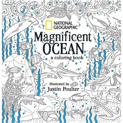 National Geographic Magnificent Ocean - (Paperback) - image 1 of 1