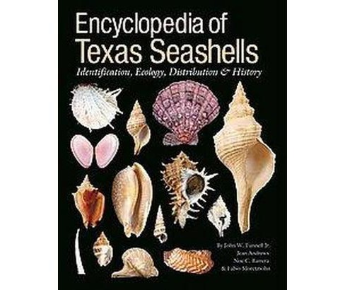 Encyclopedia of Texas Seashells : Identification, Ecology, Distribution, and History (Hardcover) (John - image 1 of 1