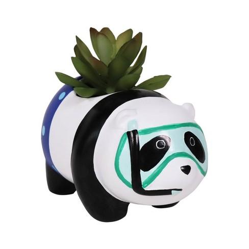 Character Succulent Panda - Sun Squad™ - image 1 of 1