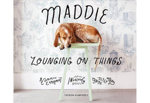 Maddie Lounging on Things : A Complex Experiment Involving Canine Sleep Patterns -  (Hardcover) - image 1 of 1