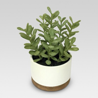 Artificial Plant in White Pot Medium - Threshold™