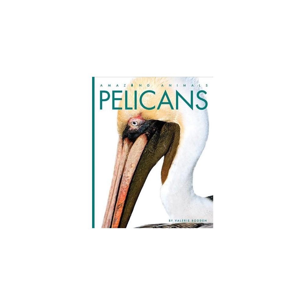 Pelicans - Reprint (Amazing Animals) by Valerie Bodden (Paperback)