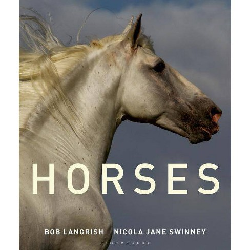 Horses - by  Nicola Jane Swinney (Hardcover) - image 1 of 1