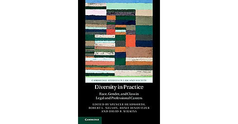 Diversity in Practice : Race, Gender, and Class in Legal and Professional Careers (Hardcover) (Robert L. - image 1 of 1