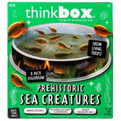 Prehistoric Sea Creatures Terrarium - Thinkbox