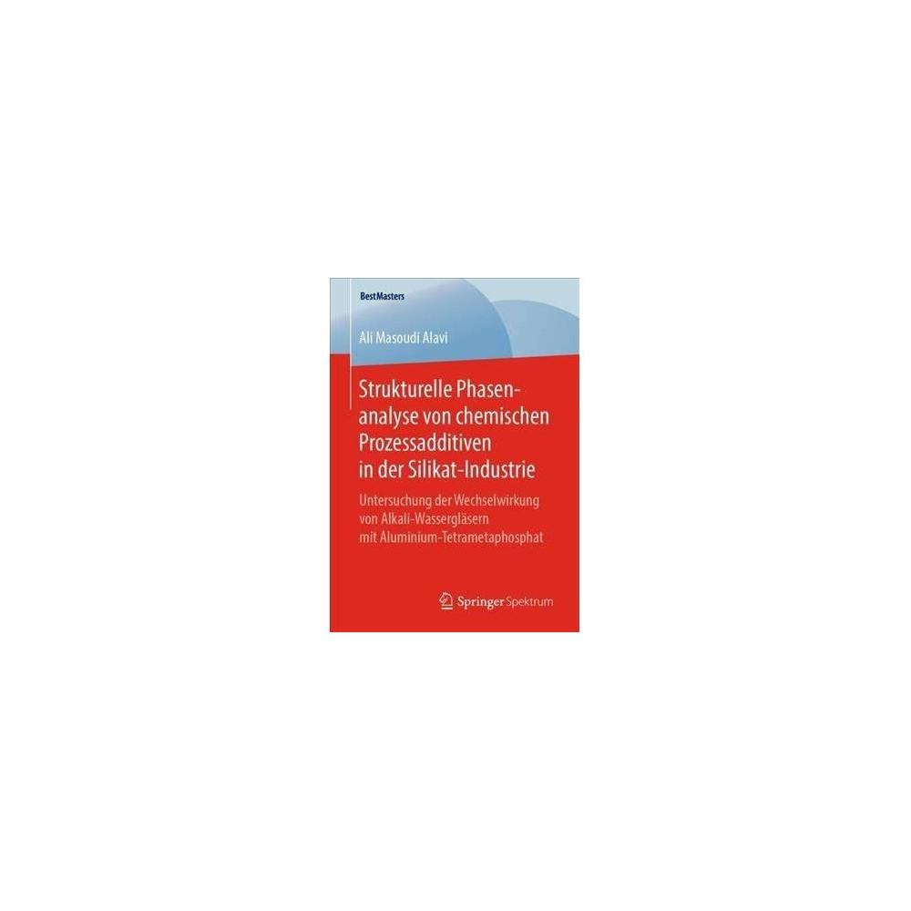 Strukturelle Phasenanalyse Von Chemischen Prozessadditiven in Der Silikat-industrie - (Paperback)