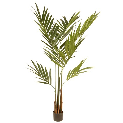 Artificial Potted Kentia Palm Tree Green 6 ft - National Tree Company® - image 1 of 1