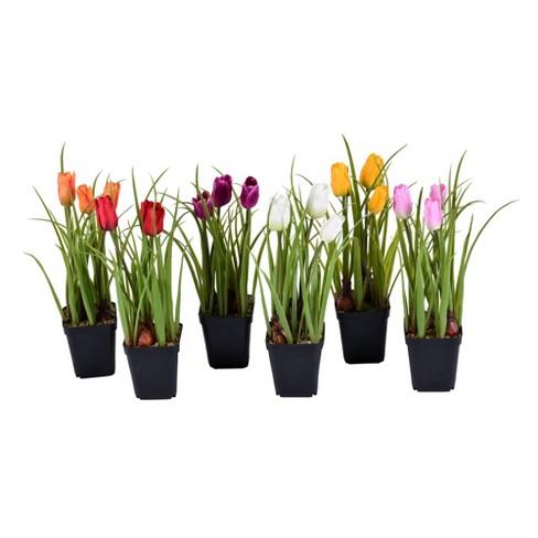 "Vickerman 10"" Artificial Tulips in Black Plastic Planters Pots, Set of 6. - image 1 of 2"