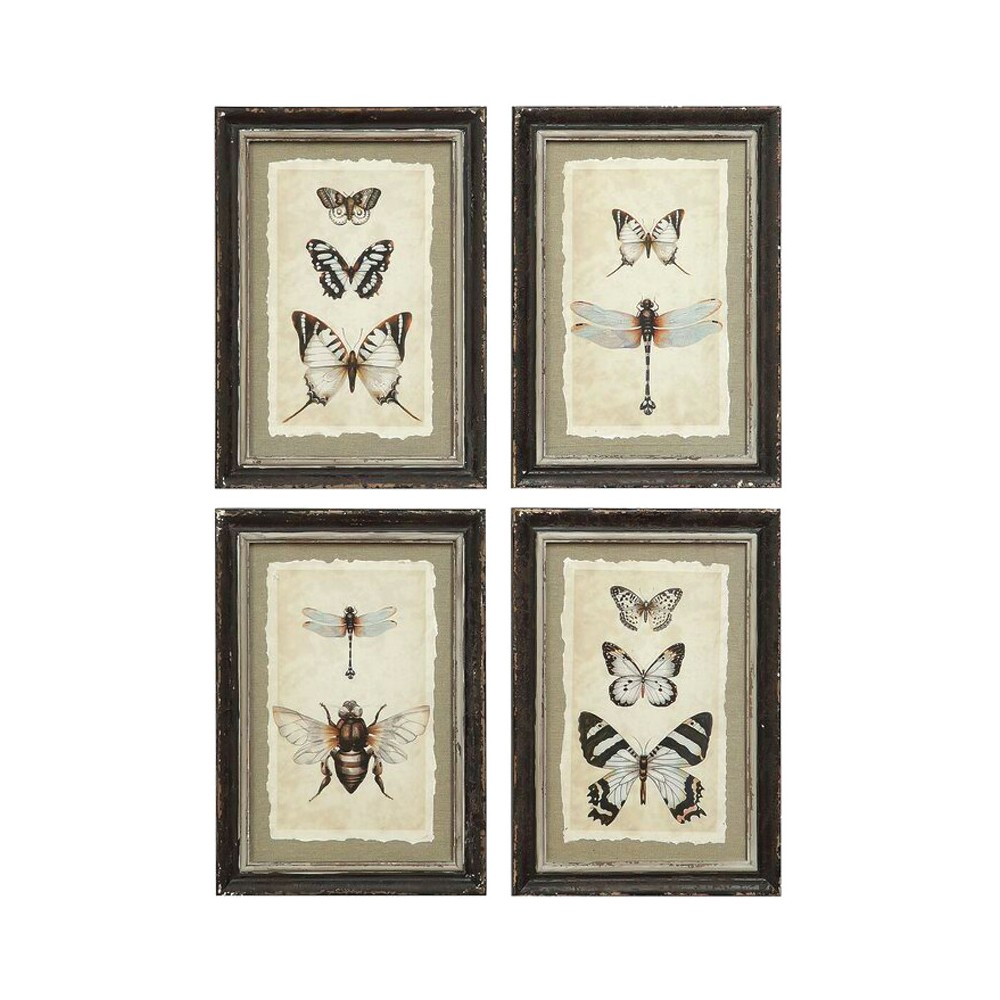 Framed Insect Wall Art Black/Cream 4pk - 3R Studios, Brown