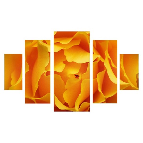 'Hypnotic Yellow Rose' by Kurt Shaffer Ready to Hang Multi Panel Art Set - image 1 of 1