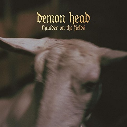 Demon Head - Thunder On The Fields (CD) - image 1 of 1