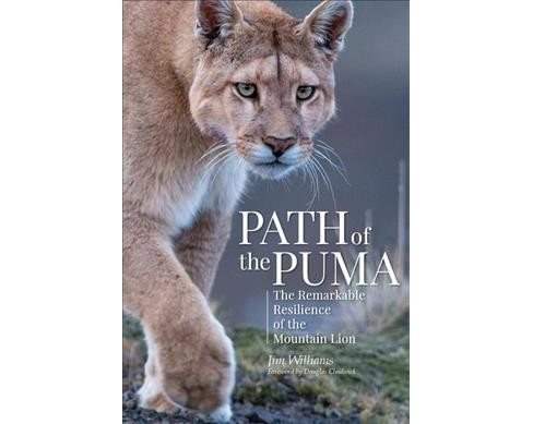 Path of the Puma : The Remarkable Resilience of the Mountain Lion -  by Jim Williams (Hardcover) - image 1 of 1