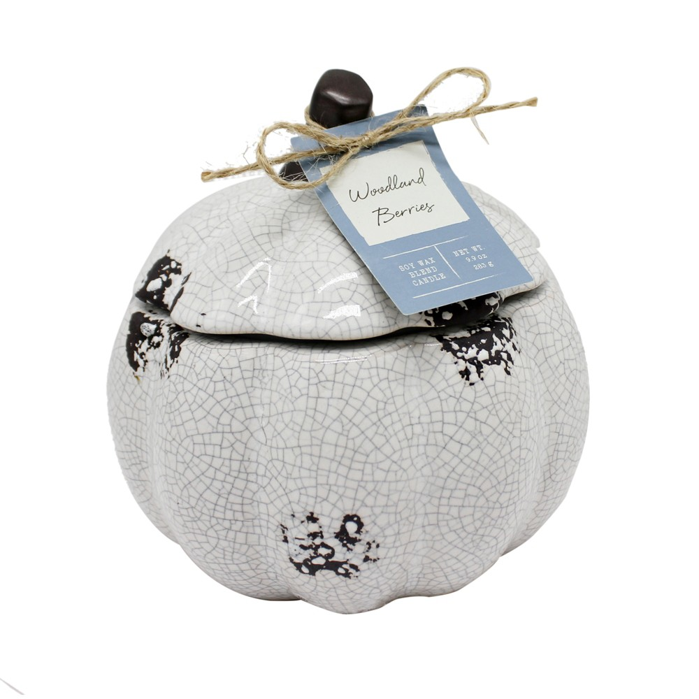 12.3oz Ceramic Pumpkin Jar Candle Woodland Berries - Chesapeake Bay Candle, Blue