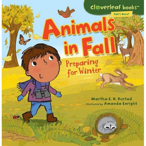 Animals in Fall - (Cloverleaf Books - Fall's Here!) by  Martha E H Rustad (Paperback) - image 1 of 1