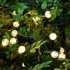 70 Lights Warm Electric LED Globe String Lights White - image 3 of 4