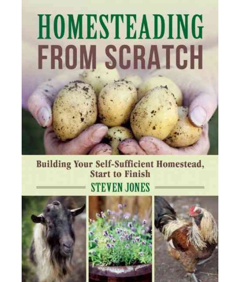 Homesteading from Scratch : Building Your Self-Sufficient Homestead, Start to Finish (Paperback) (Steven - image 1 of 1