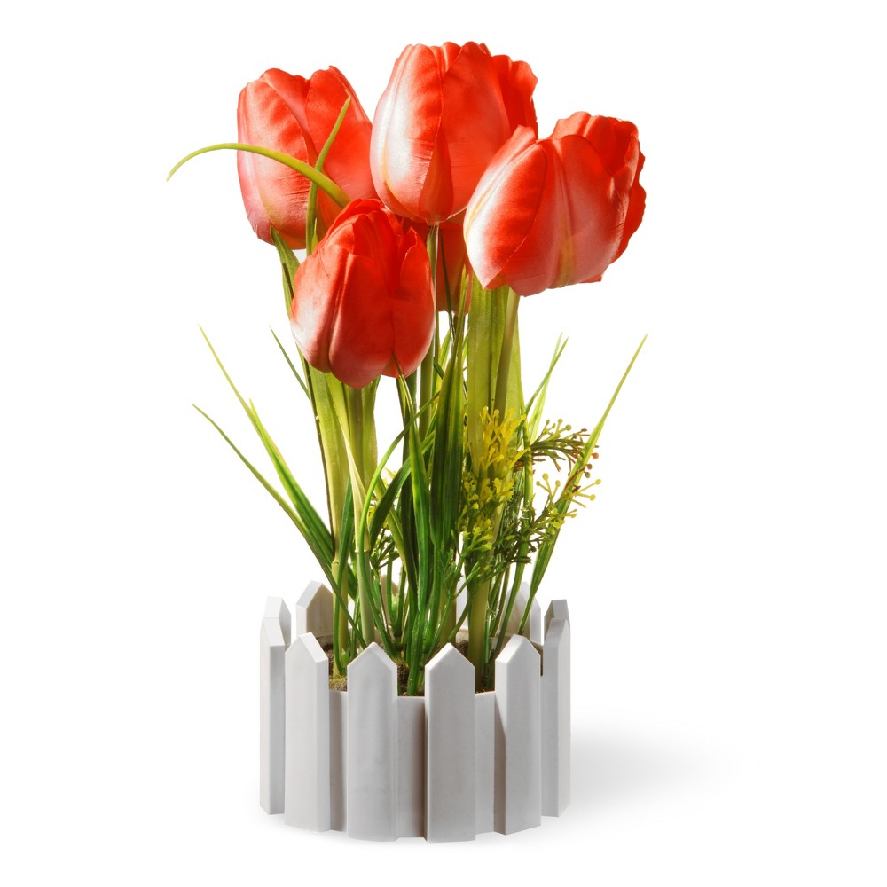 "Image of ""11"""" Potted Red Tulips - National Tree Company, Green Red White"""