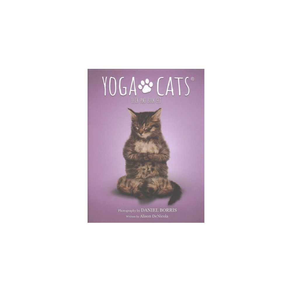 Yoga Cars Deck & Book Set (Paperback) (Daniel Borris)