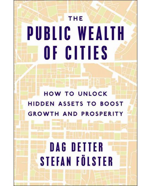 Public Wealth of Cities : How to Unlock Hidden Assets to Boost Growth and Prosperity (Hardcover) (Dag - image 1 of 1