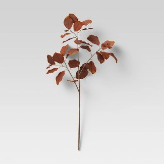 "28"" Artificial Silver Dollar Spray Leaf Stem Brown - Threshold™"