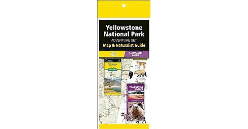 Yellowstone National Park Adventure Set : Map & Naturalist Guide (Reissue / Revised) (Paperback) - image 1 of 1