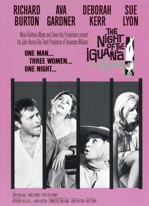 Night of the iguana (DVD) - image 1 of 1