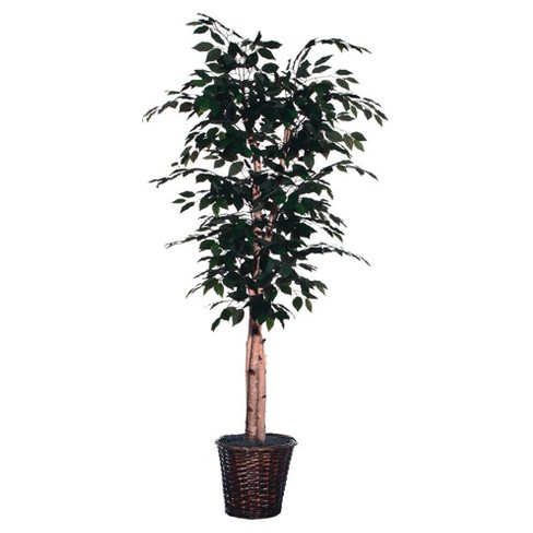 Artificial Paper Birch Deluxe (6ft) Green - Vickerman® - image 1 of 1
