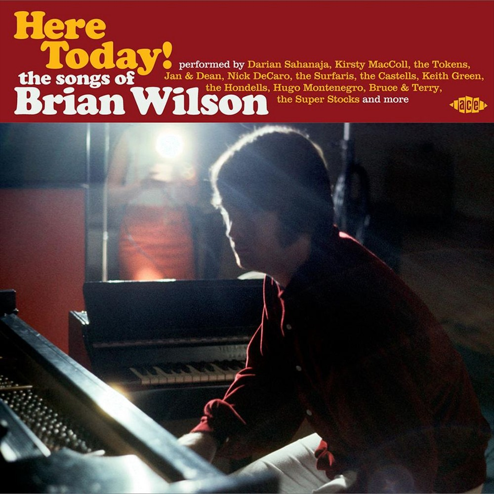 Various - Here Today:Songs Of Brian Wilson (CD)