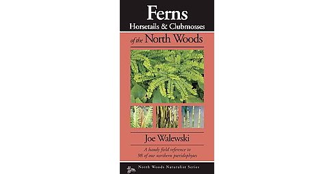Ferns & Allies of the North Woods : A Handy Field Reference to All 86 of Our Ferns and Allies - image 1 of 1