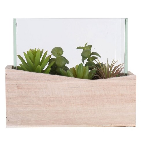 """Vickerman 6"""" Artificial Green Assorted Succulents in Wood Container and Glass Top. - image 1 of 3"""