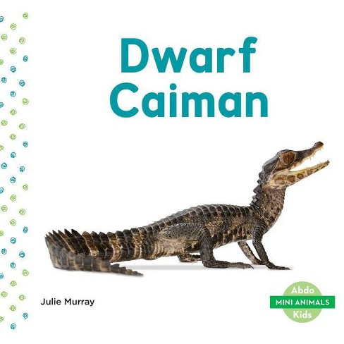 Dwarf Caiman - (Mini Animals) by  Julie Murray (Hardcover) - image 1 of 1