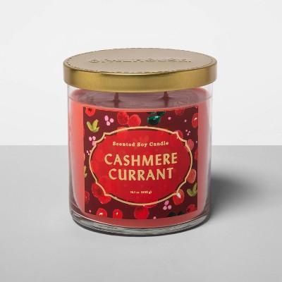 15.1oz Lidded Glass Jar 2-Wick Candle Cashmere Currant - Opalhouse™