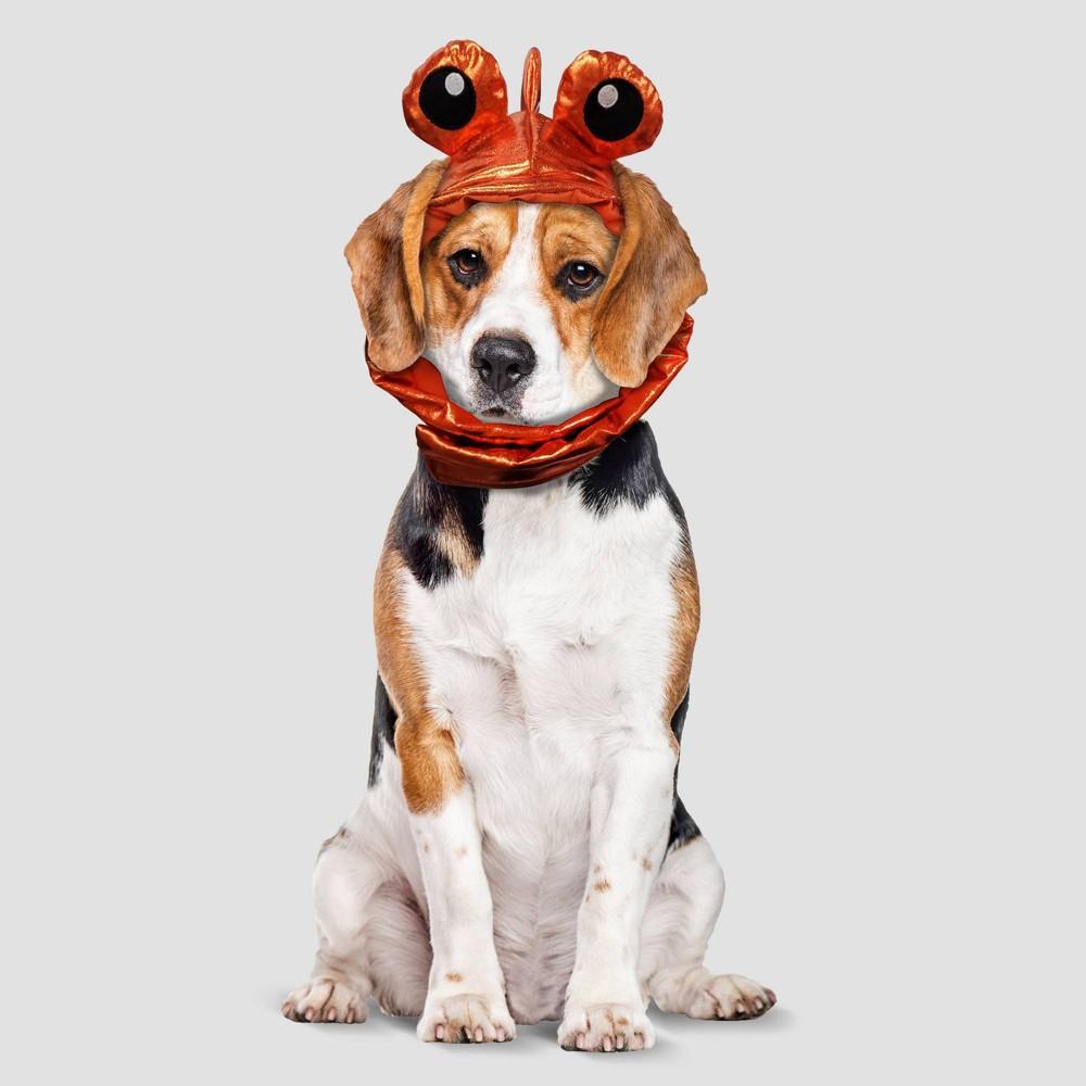Goldfish Halloween Dog Costume Xl Hyde 38 Eek Boutique 8482