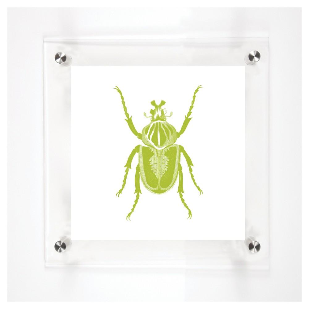 Mitchell Black Beetles John Decorative Framed Wall Canvas Kiwi (12
