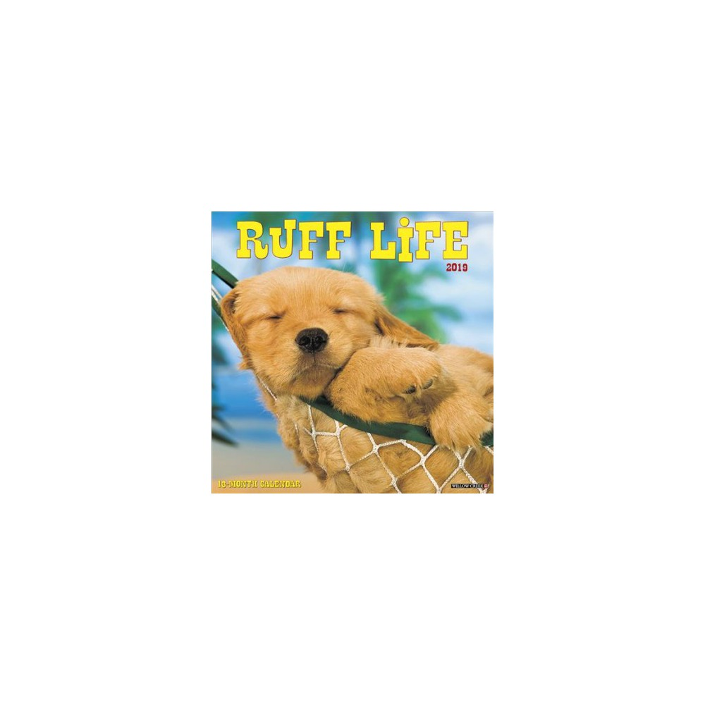 Ruff Life 2019 Calendar - (Paperback)