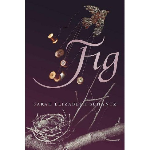 Fig - by  Sarah Elizabeth Schantz (Hardcover) - image 1 of 1
