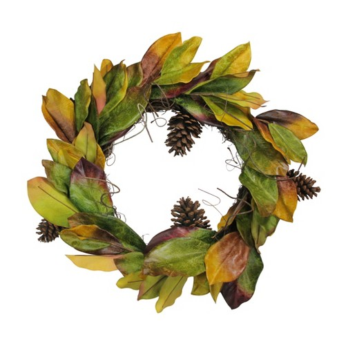 "Northlight 24"" Autumn Magnolia Leaf and Pine Cone Artificial Thanksgiving Wreath - Green/Brown - image 1 of 2"