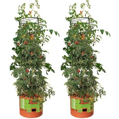 Hydrofarm GCTB Tomato Barrel Pot Garden Planting 4 Foot Trellis System (2 Pack)